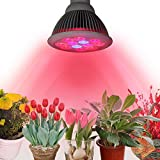 InnooTech Pflanzenlampe E27 24W Led Wachstumslampe Pflanzenlicht Wuchslampen Innengarten Pflanze Wachsen Licht für Saatgut, Blumen, Gemüse, Wasserpflanzen, Topf- und Zimmerpflanzen