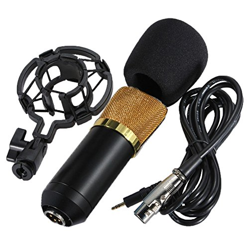 Haibei Nero Professionale Microfono a Condensatore/Microphone Mic Mike Sound Studio Recording + Stand/Holder/Support & Shock Mount