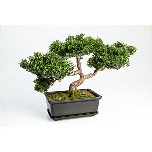 artplants Set 2 x Künstlicher Bonsai Ceder mit 120 Zweigen, im Topf, 25 cm - Hochwertiger Kunstbonsai