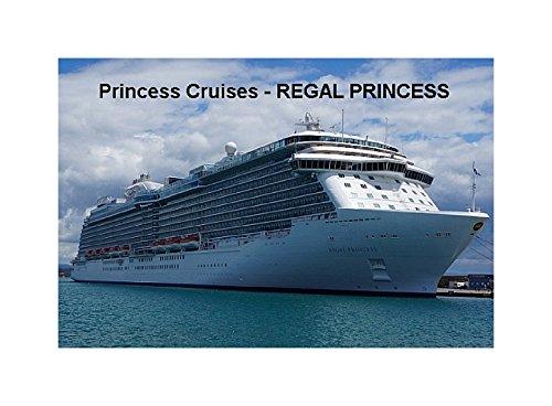 iman-para-nevera-buque-de-crucero-regal-princess-princess-cruises-9cm-x-6cm-jumbo