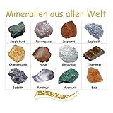 Mineralien Rohsteine Edelsteine Sammlung 12 Stück im einzelen benannt z.B. Rosenquarz Bergkristall...