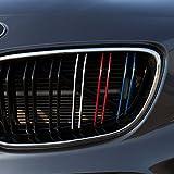 Motoking Nierenaufkleber - STANDARD - DOPPELNIEREN-GRILL - 48-teiliges Autoaufkleberset, 4 Farben im Set (Dunkelblau, Rot, Weiß, Hellblau)