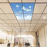 HOMEDEMO 4 in 1 Deckenleuchte LED Panel mit Himmel und Wolken Muster 60x60cm Ultraslim Modern 40W Kaltweiß 6000K Wohnzimmer Lampe mit Befestigungsmaterial und Trafo Weißrahmen