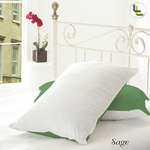 300tc-100-cotone-egiziano-finitura-elegante-reversibile-2-paio-di-federe-cotone-sage-solid-uk-single