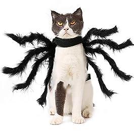 Museourstyty D/éguisement de chat ou chien pour Halloween S 1