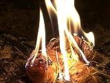 10 Kg Zündwolli Anzünder aus Holzwolle und Wachs Ofenanzünder Kaminanzünder Grillanzünder Brennholzanzünder Kaminholzanzünder Holzanzünder - 2