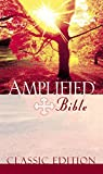 Image de Amplified Bible, eBook