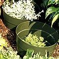 AQUARING 10-er Set, Ø 20 cm braun von DE-PLASTIK GmbH - Du und dein Garten