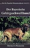Der Bayerische Gebirgsschweisshund