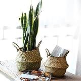 Seegraskorb, Handgewebt für Zimmerpflanzen