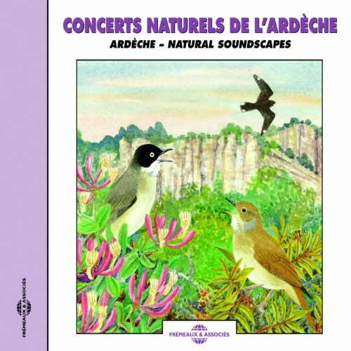 Grive Musicienne (Songthrush)