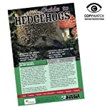 hedgehog care set(bowl/food and info guide) Hedgehog care set(bowl/food and info guide) 51nADqP6HvL