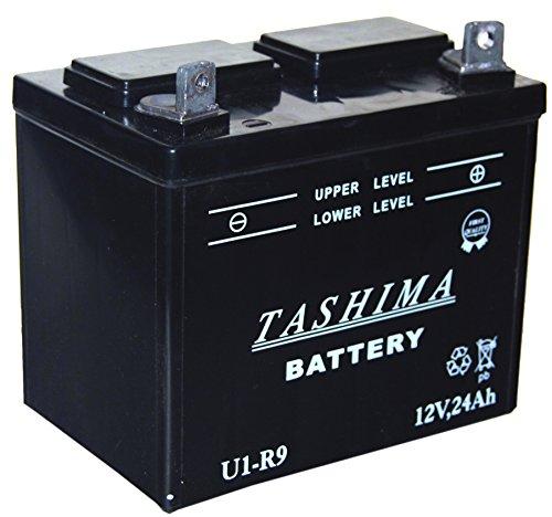 Greenstar 13198 Batterie pour tondeuse U1R F506
