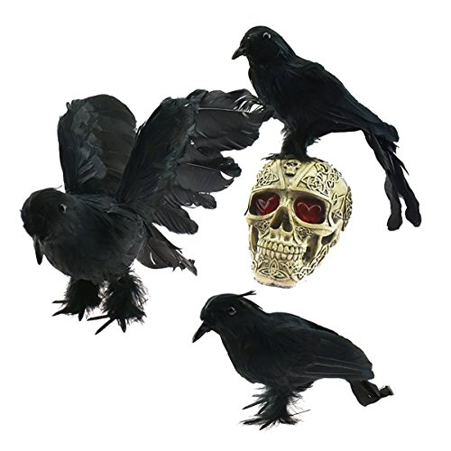 Vogel Schwanz Kostüm - Realistische gefiederten Crows - Halloween Dekoration Realistisch 3 PCS