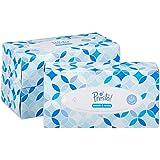 Amazon-Marke: Presto! 4-lagige Papiertaschentücher-Boxen, 12er Pack (12 x 100 Tücher)