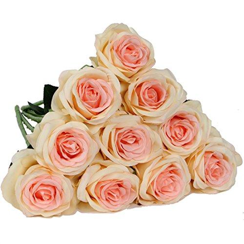 luyue Gypsophila Artificiale Finto Rosa Seta Fiore Festa Di Nozze Bouquet Home Decor, confezione da 10 Style 1 Champagne