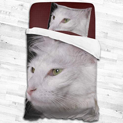Enhusk Gato Angora Gatito Blanco Pura Sangre Mascota