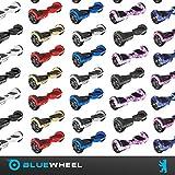 Bluewheel HX310s - 10
