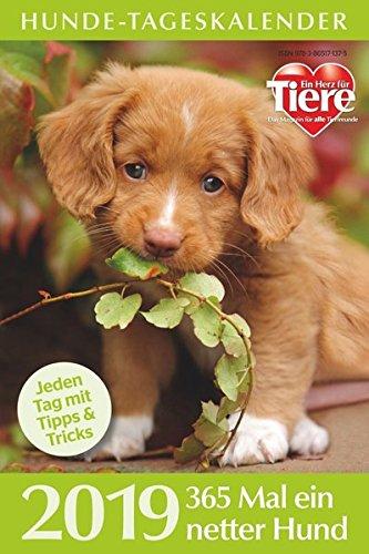 Hunde-Tageskalender 2019 (Hund Kalender)