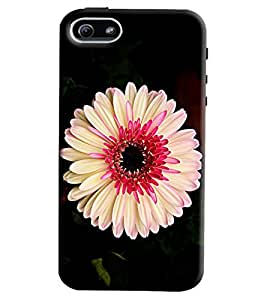 Blue Throat White Flower Pattern Hard Plastic Printed Back Cover/Case For Apple iPhone 6