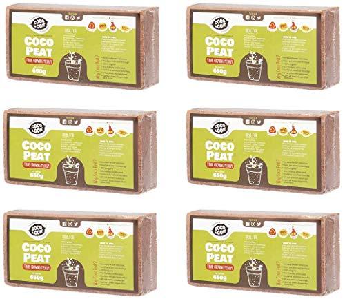 6 X 650g (9L) Fibre de coco pressé | Sans tourbe | 100% pure | Substrat de noix de coco pour terrarium | Terre de coco pour Fleurs | Terreau pour fruits, légumes | Aucun additif de fertilisant