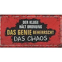 Andrea Verlag Großes Metallschild Genie beherrscht DAS Chaos, 30,5 x 15,5 x 0,2 cm