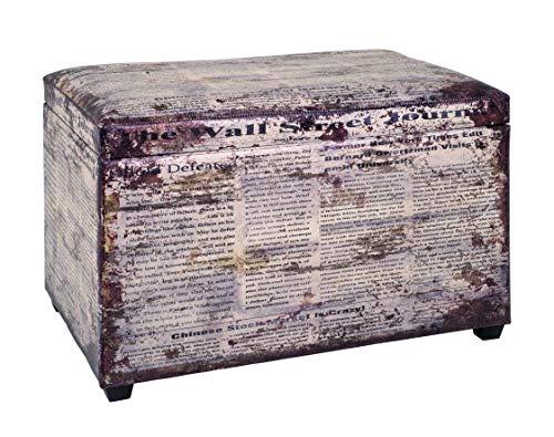 HAKU Möbel 30786 Sitztruhe 65 x 40 x 42 cm, vintage_1