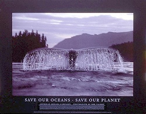 bob-talbot-save-our-oceans-poster-drucken-7874-x-6096-cm