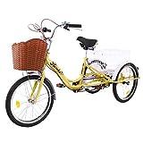 Riscko Dreirad für Erwachsene mit Zwei Körben, Beige
