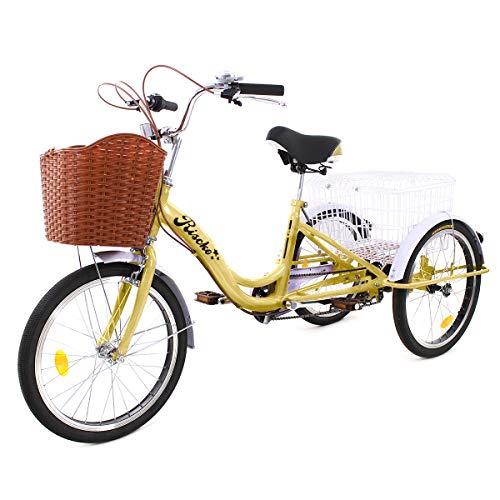 Riscko Triciclo para Adultos con Dos cestas