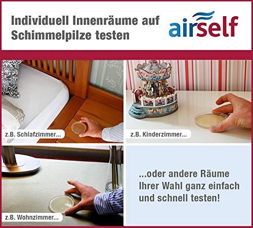 Schimmeltest für zu Hause - Schimmelpilz Test für bis zu 6 Räume - Schimmelpilz Schnelltest zur Einschätzung der Luftqualität hinsichtlich einer Schimmelpilzbelastung in Innenräumen