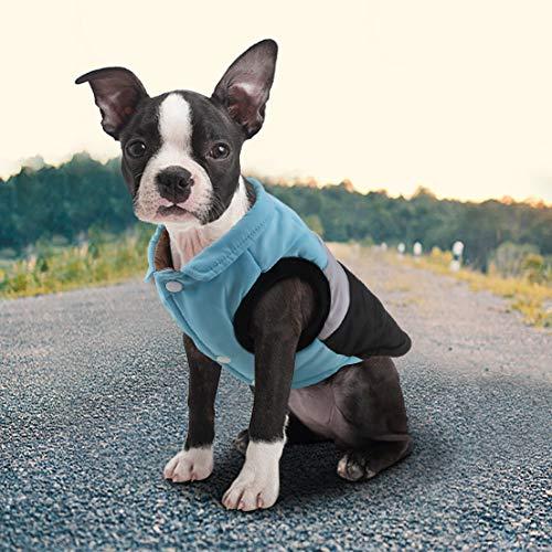 Idepet Haustier Hund Katze Mantel mit Leine Anker Farbe Patchwork gepolsterte Welpen Weste Teddy Jacke Chihuahua Kostüme Mops Kleidung (XL, Blau)