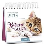 Katzenglück 2019: Miniwochenkalender