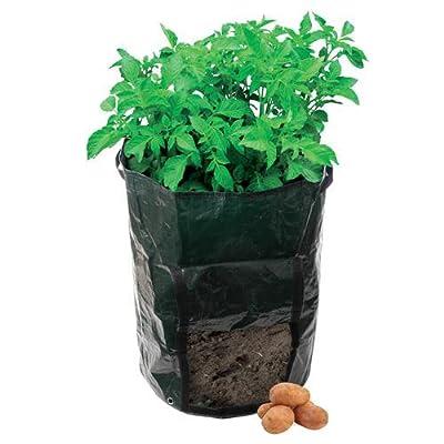 Culture de sac de plantation pour pommes de terre, plastique tissé résistant-Convient pour toutes les Variétés