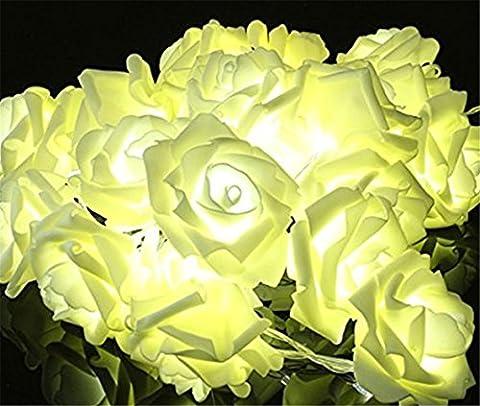 Lerway 20 LEDs Lumineuses Forme de Fleur Rose Floraison Lumineuse Guirlandes Lumières,pour le Parti de (giardino decorazione esterna e Patio)