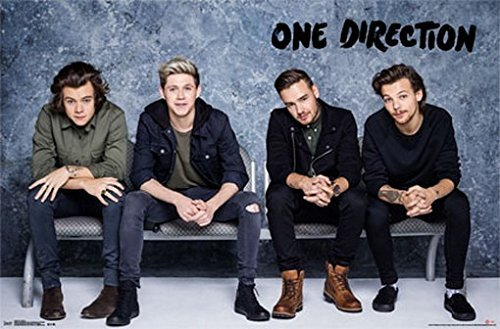 Trends One Direction Poster Group Shot, sitzen auf Bank Rare Hot 55,9 x 86,4 cm