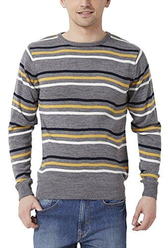 Peter England Regular Fit Sweater _psw51500609_s_grey