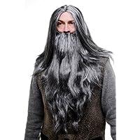 Wig me up - Set de peluca y barba: hechicero canoso, brujo, gris PW0210-P103MPC309(A459