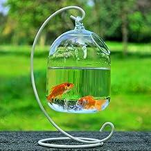 Aquarium pour poissons for Aquarium original pour poisson rouge