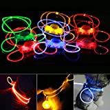 Soulitem Haustier-Hundehalsband-Nacht Sicherheits-LED Light-up blinkendes Glühen im Dunklen Haustier-Produkte