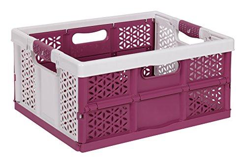 keeeper  Lea Profi-Klappbox mit Softgriffen, Plastik, weiß / berry, 48 x 34.5 cm