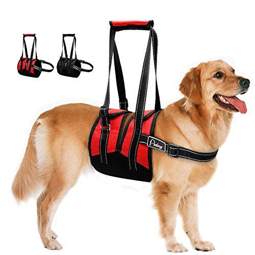 Hunde Mensch Gute Kostüm - HHY-C Reflektierende Haustier-Geschirr-justierbare Ineinander greifen-Nylonhaustier-Stützweste für verletzte große Hunde,Black,S