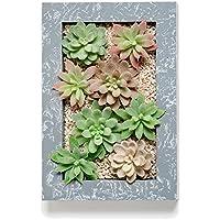 Una moderna y sofisticada jardinera de pared que contiene una gran variedad de vibrantes y realistas