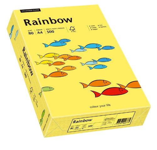 Papyrus 88042343 Drucker-/Kopierpapier farbig, Bastelpapier Rainbow: 80
