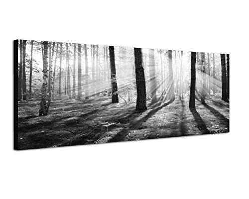 Schwarzes Bild - Panoramabild schwarz/weiss