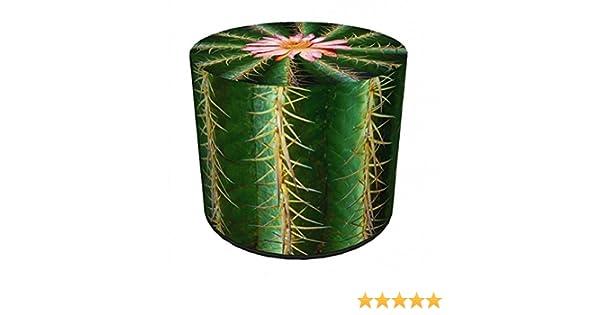 BERTONI Design Pouf Sitzpuff Sitzhocker 40x40 Filz Bezug Mehrfarbig Aufdruck Motiv Kaktus