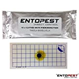 Pack of 10 Entopest Common Clothes Moth Pheromone Replacement Refill Pads