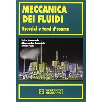 Meccanica Dei Fluidi. Esercizi E Temi D'esame