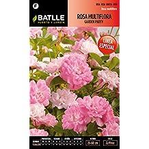 Semillas Batlle 096250BOLS - Rosa Multiflora Garden Party