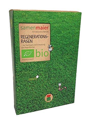 Samen Maier BR1 Regenerationsrasen 1 kg (Bio-Rasensamen)